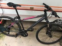 Specialized mountain bike/Ariel elite