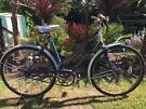 """Triumph """"Palm Beach"""" vintage bike cycle"""