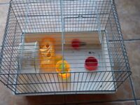 Gerbil / Hamster cage - £10