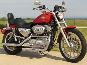2002 harley-davidson XLH883   $2,500 in Options  ONLY $4,950  or