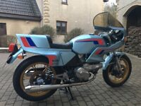 Ducati Pantah 600 Blue - stunning