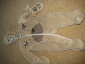 Bear snowsuit 0-3 months.