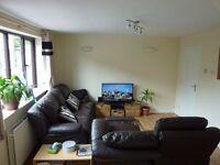 Spacious 2 Bedroom flat in the popular Crooksmoor area, ideal for postgraduates or professionals.