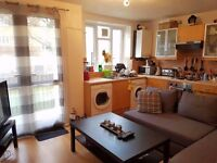 Spacious twin room in lovely Putney flat