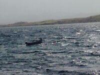 14 ft fibreglass boat