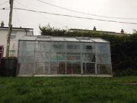 12ft x 8ft greenhouse
