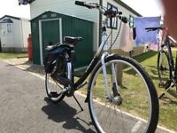 Ladies giant expression bike