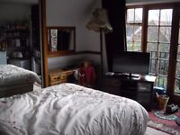 Bright, Self Contained Double Room in Cottage
