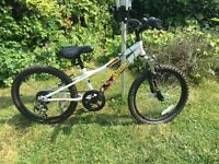 Boys 20 inch bike