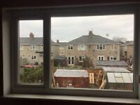 Pair of USED windows for FREE