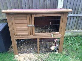 Guinea cage