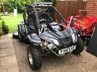 Road legal buggy Quadzilla RL500cc