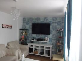single room to rent in special house 400/month (only for one month - March)