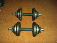 20kg Cast Iron Dumbell Set