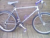 ADULT MARIN PALISADES TRAIL MOUNTAIN BIKE WITH 21 GEARS