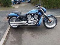 Harley Davidson VRSCA V Rod