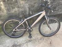 Spare or repair bike