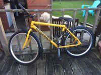 Mountain Bike - Lots of Extras