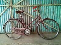Classic ladies vintage Hercules Balmoral bike
