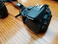 Canon EOS 100D + 2 Lenses + bag