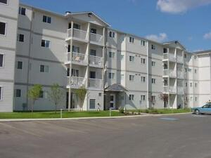 1 Bedroom Apts -  Insuite Laundry