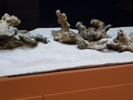 Live rock and sand for marine tank