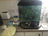25l Tank With All The Accessories