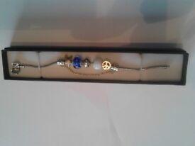 Idea Christmas Present, Pandora similar Style, with Silver feature/Quality premium colour charms £12