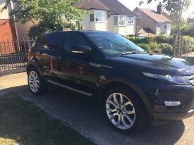 Range Rover Evoque 2014 black HPI CLEAR full service history superb car