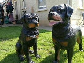 2 Ornamental Rottweiler Dogs for sale