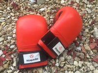 Hayashi boxing gloves