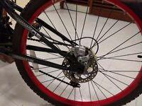Mountain Dunlop bike