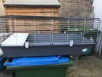 Large plastic rabbit/guinea pig hutch
