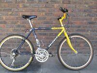 Teen/boys Mountain bike
