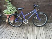 Adult ladies Raleigh calypso bike with 6 gears