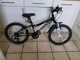 Boys 200 adventure mountain bike