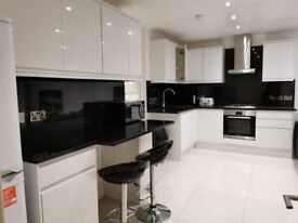 Newly Built Spacious Ground Floor 2 Bed Flat with Garden in Tower Bridge SE1