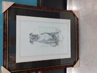 REDUCED ORIGINAL C.VARLEY PENCIL ART FREE FRAME
