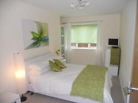 FLAT SHARE. FURNISHED DOUBLE ROOM AVAILABLE.