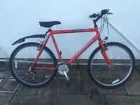 Mans Raleigh Firefly bike