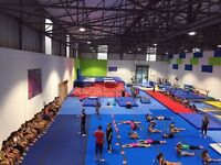 Acrobatic, Freestyle Gymnastics, Trampoline, Parkour, Freerunning, Calisthenics Coaches