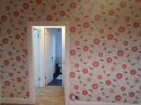Beautiful flat , walking distance from Old and New Town Edinburgh