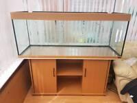 Juwel Rio 400 fish tank.