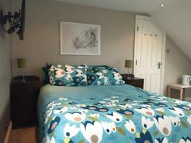 Fantastic double room with En suite in professional house share