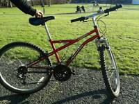 Apollo bike for cheap