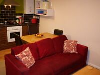 1 bedroom fully furnished apartment with private parking in centre of Newton Abbot