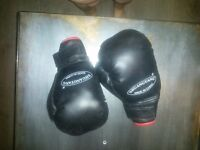1 pair of boxing gloves and sparring head guard