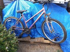 18 gear Falcon Maxima ladies mountain bike