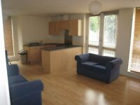 Modern 2 Bedroom Flat available