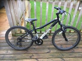 Boys Mongoose Mountain Bike